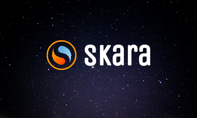Background-SKARA