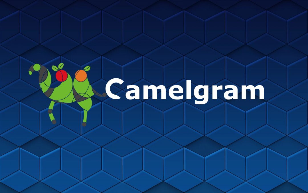 ICO: Camelgram – the Initial Coin Offering